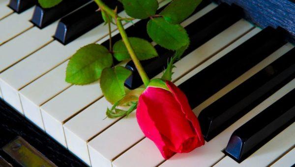 Uitvaart muziek - Muziek tijdens een uitvaart is sfeer bepalend en laat ook iets voelen van wie iemand was. Het maakt een uitvaart heel persoonlijk. Afhankelijk van de keuze waar een uitvaart plaatsvindt kunt u muziek ten gehore laten brengen.