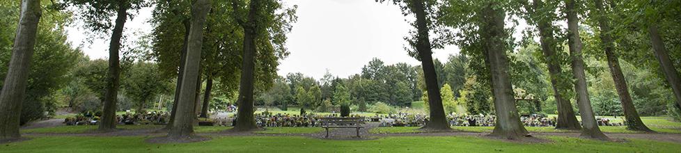 Bij Crematoria Twente werken we graag met u en de door u gekozen uitvaartonderneming samen om alle wensen rondom de afscheidsplechtigheid vorm te geven.