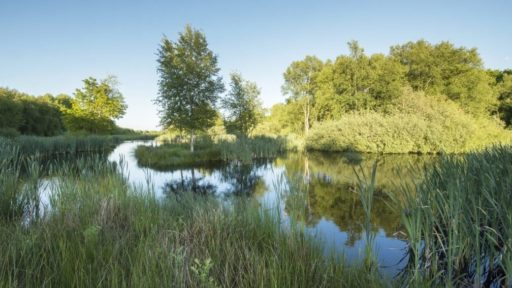 Open dag natuurbegraafplaats Hillig Meer